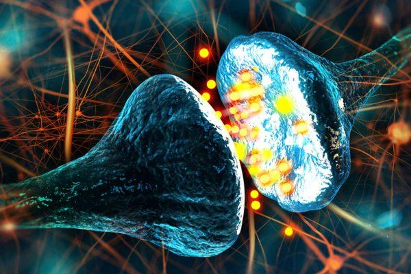 چطوری با یک سری تغییرات ساده و کوچیک، هر روز باهوش تر بشیم؟ مغز سلطان سلامتی ورزش زبان خوراک مناسب تغذیه هوش ذهن باهوش فکر تفکر آلزایمر مدیتیشن خواب بازی خاطرات افسردگی امید مثبت اندیشی
