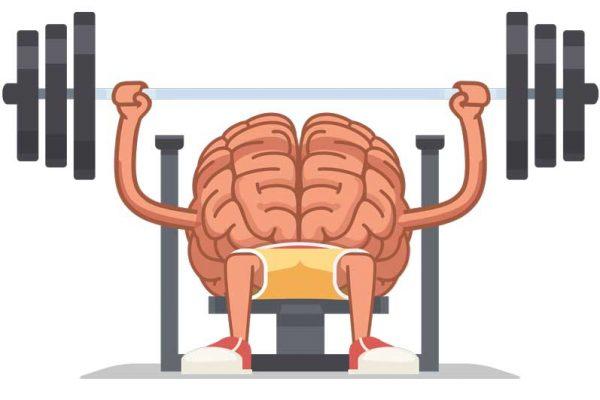 مغز سلطان سلامتی ورزش زبان خوراک مناسب تغذیه هوش ذهن باهوش فکر تفکر آلزایمر مدیتیشن خواب بازی خاطرات افسردگی امید مثبت اندیشی قسمت های مغز