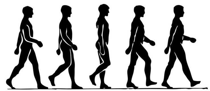 آموزش زبان بدن - زبان بدن چیست - در مورد زبان بدن - تصاویر زبان بدن - زبان بدن در مذاکره - زبان بدن - راهکاهر های استفاده از زبان بدن