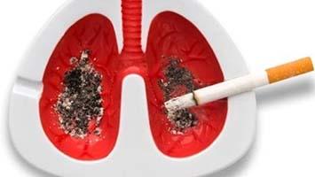 ضرر های سیگار کشیدن ضررهای سیگار در بدن ضررهای سیگار در جسم تاثیر سیگار خطرات سیگار کشیدن سیگار