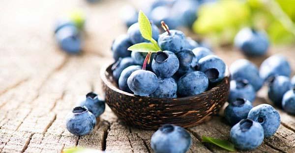 غذا برای تقویت مغز مواد غذایی برای تقویت مغز مواد غذایی مفید برای تقویت مغز غذای مغز تقویت مغز خوراکی تقویت حافظه غذای مغز چیست برای تقویت حافظه چی بخوریم غذاهای مفید برای ترمیم سلول های مغز افزایش عملکرد مغز