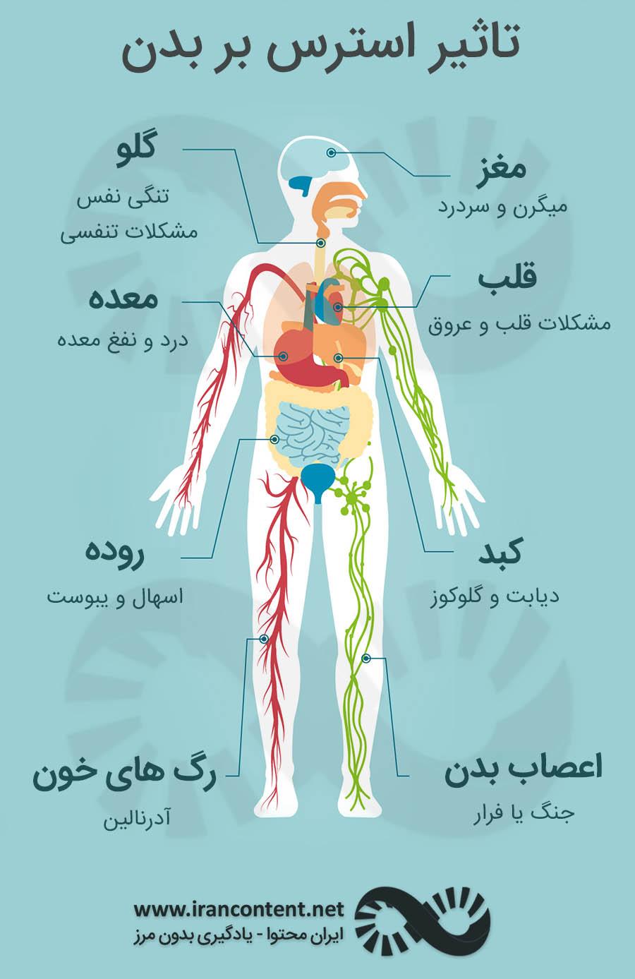 تاثیر استرس بر مغز عوامل استرس زا انواع استرس استرس چیست استرس
