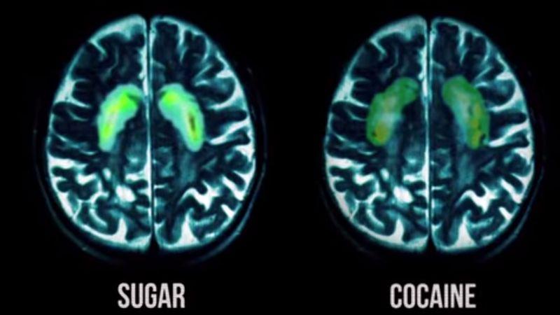 قند یک اصطلاح کلی برای تعریف مجموعهای از مولکولها به نام کربوهیدرات هاست، و این در غذای ها و نوشیدنیهای بسیار زیادی پیدا میشود. تاثیر شکر بر مغز بوسیله تجزیه و جذب شکر و کربوهیدرات های آن بوجود می آید.
