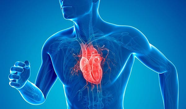 در اینجا شما با 50 دلیل اصلی و مهم برای شروع رژیم غذایی سالم آشنا می شوید. آیا میدونستید نداشتن رژیم غذایی مناسب احتمال سکته قلبی را تا 200 درصد بالا میرود؟