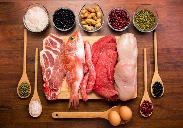 پروتئین رژیم پر پروتئین انواع پروتئین