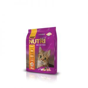 غذای خشک گربه نوتری پت